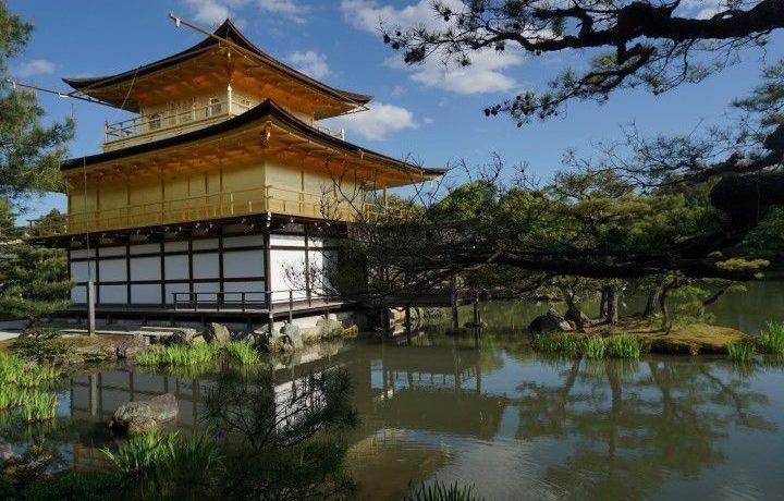 Roteiro do que visitar no Japão em 12 dias: 2 semanas entre cultura, gastronomia e insólitos japoneses