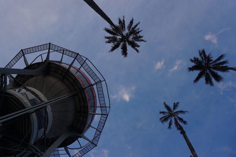 La Torre Chipre, Manizales