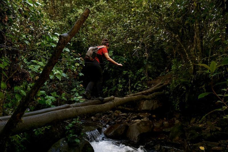 Pasáis por puentes como este en los que hay que ir con cuidado para no caer al río...