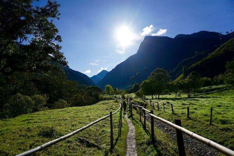 Paisajes que disfrutas durante el trekking por el Valle del Cocora